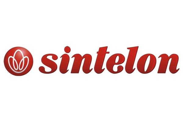 SINTELON DYWANY